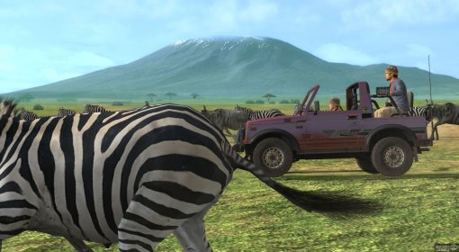 """That Zebra looks more like an 'ass' to me!"" ""Oh shut up."""